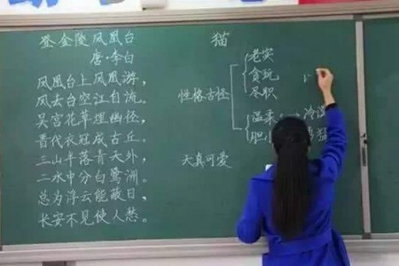 """课堂上的板书可以说代表着老师""""脸面""""了!"""